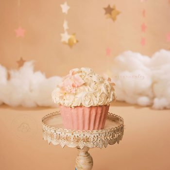 Maryland Baby Photographer – Cake Smash – Twinkle Twinkle Little Star