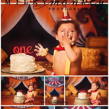 Cake Smash Under the Big Top – Maryland Baby Photographer